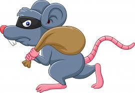 o rato bandido