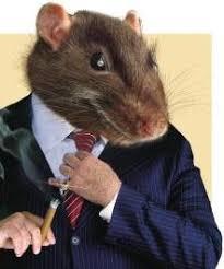 o rato de colarinho branco