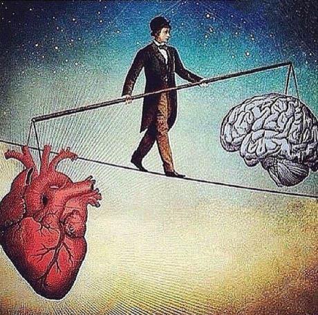 Cérebro e o Coração
